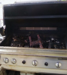 This stainless grill might have the most disgusting grill parts I have seen