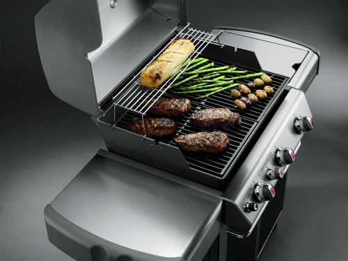 Weber Gas Grill Parts >> Grilling on a new weber genesis 2011 model — Gas Grills ...