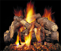 vented fireplace gas log camp fire